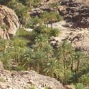 maroc-etude-02.07-154---Copie