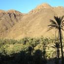 maroc-etude-02.07-193---Copie